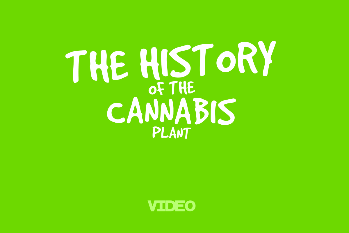 VIDEO: History of the Cannabis Plant